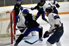 CIAC Ice Hockey; Newtown 4 vs. SH,LI,TH,NO 1 - Photo # (1243)