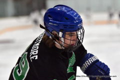 CIAC Ice Hockey; Newtown 4 vs. SH,LI,TH,NO 1 - Photo # (126)