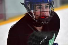 CIAC Ice Hockey; Newtown 4 vs. SH,LI,TH,NO 1 - Photo # (1267)