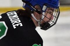 CIAC Ice Hockey; Newtown 4 vs. SH,LI,TH,NO 1 - Photo # (155)