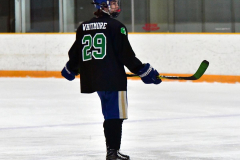 CIAC Ice Hockey; Newtown 4 vs. SH,LI,TH,NO 1 - Photo # (349)