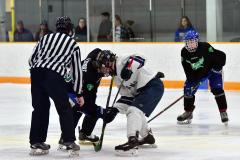 CIAC Ice Hockey; Newtown 4 vs. SH,LI,TH,NO 1 - Photo # (351)