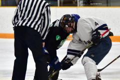 CIAC Ice Hockey; Newtown 4 vs. SH,LI,TH,NO 1 - Photo # (352)
