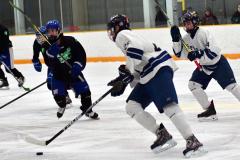 CIAC Ice Hockey; Newtown 4 vs. SH,LI,TH,NO 1 - Photo # (361)