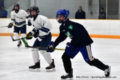 CIAC Ice Hockey; Newtown 4 vs. SH,LI,TH,NO 1 - Photo # (371)