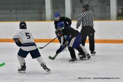CIAC Ice Hockey; Newtown 4 vs. SH,LI,TH,NO 1 - Photo # (442)