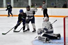 CIAC Ice Hockey; Newtown 4 vs. SH,LI,TH,NO 1 - Photo # (446)