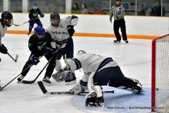 CIAC Ice Hockey; Newtown 4 vs. SH,LI,TH,NO 1 - Photo # (447)