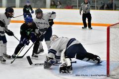 CIAC Ice Hockey; Newtown 4 vs. SH,LI,TH,NO 1 - Photo # (448)