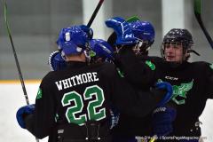 CIAC Ice Hockey; Newtown 4 vs. SH,LI,TH,NO 1 - Photo # (451)
