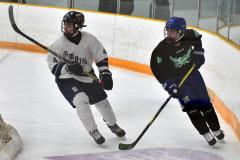 CIAC Ice Hockey; Newtown 4 vs. SH,LI,TH,NO 1 - Photo # (477)