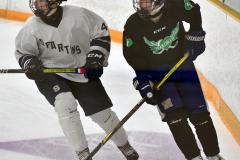 CIAC Ice Hockey; Newtown 4 vs. SH,LI,TH,NO 1 - Photo # (480)