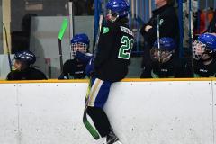 CIAC Ice Hockey; Newtown 4 vs. SH,LI,TH,NO 1 - Photo # (644)