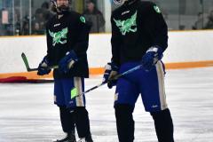 CIAC Ice Hockey; Newtown 4 vs. SH,LI,TH,NO 1 - Photo # (69)