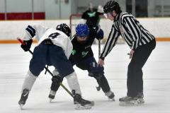 CIAC Ice Hockey; Newtown 4 vs. SH,LI,TH,NO 1 - Photo # (714)