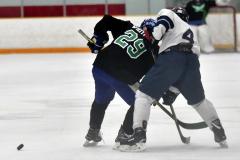 CIAC Ice Hockey; Newtown 4 vs. SH,LI,TH,NO 1 - Photo # (716)