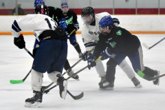 CIAC Ice Hockey; Newtown 4 vs. SH,LI,TH,NO 1 - Photo # (719)