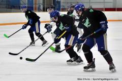 CIAC Ice Hockey; Newtown 4 vs. SH,LI,TH,NO 1 - Photo # (722)