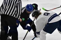 CIAC Ice Hockey; Newtown 4 vs. SH,LI,TH,NO 1 - Photo # (765)