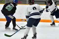 CIAC Ice Hockey; Newtown 4 vs. SH,LI,TH,NO 1 - Photo # (772)
