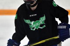 CIAC Ice Hockey; Newtown 4 vs. SH,LI,TH,NO 1 - Photo # (804)