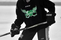 CIAC Ice Hockey; Newtown 4 vs. SH,LI,TH,NO 1 - Photo # (805)