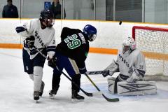 CIAC Ice Hockey; Newtown 4 vs. SH,LI,TH,NO 1 - Photo # (820)