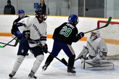 CIAC Ice Hockey; Newtown 4 vs. SH,LI,TH,NO 1 - Photo # (821)