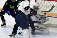 CIAC Ice Hockey; Newtown 4 vs. SH,LI,TH,NO 1 - Photo # (823)