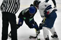 CIAC Ice Hockey; Newtown 4 vs. SH,LI,TH,NO 1 - Photo # (833)