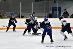 CIAC Ice Hockey; Newtown 4 vs. SH,LI,TH,NO 1 - Photo # (849)