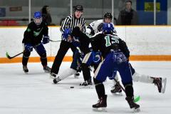 CIAC Ice Hockey; Newtown 4 vs. SH,LI,TH,NO 1 - Photo # (851)