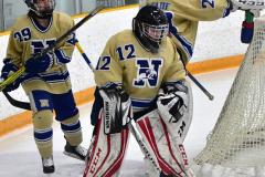 CIACT D3 Ice Hockey; #8 Newtown 7 vs. #9 Wilton 2 - Photo # 015