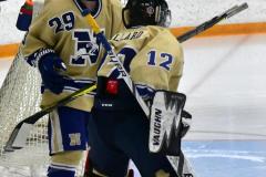 CIACT D3 Ice Hockey; #8 Newtown 7 vs. #9 Wilton 2 - Photo # 017