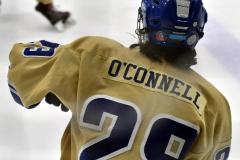 CIACT D3 Ice Hockey; #8 Newtown 7 vs. #9 Wilton 2 - Photo # 1003