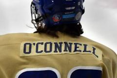 CIACT D3 Ice Hockey; #8 Newtown 7 vs. #9 Wilton 2 - Photo # 1004
