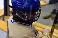 CIACT D3 Ice Hockey; #8 Newtown 7 vs. #9 Wilton 2 - Photo # 1231