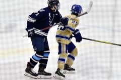 CIACT D3 Ice Hockey; #8 Newtown 7 vs. #9 Wilton 2 - Photo # 1270