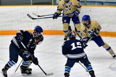 CIACT D3 Ice Hockey; #8 Newtown 7 vs. #9 Wilton 2 - Photo # 1290