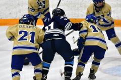 CIACT D3 Ice Hockey; #8 Newtown 7 vs. #9 Wilton 2 - Photo # 1295