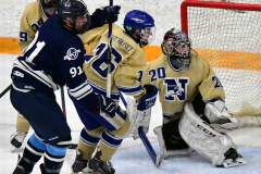 CIACT D3 Ice Hockey; #8 Newtown 7 vs. #9 Wilton 2 - Photo # 1297