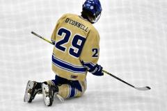 CIACT D3 Ice Hockey; #8 Newtown 7 vs. #9 Wilton 2 - Photo # 1312