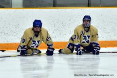 CIACT D3 Ice Hockey; #8 Newtown 7 vs. #9 Wilton 2 - Photo # 132