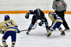 CIACT D3 Ice Hockey; #8 Newtown 7 vs. #9 Wilton 2 - Photo # 1350