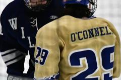 CIACT D3 Ice Hockey; #8 Newtown 7 vs. #9 Wilton 2 - Photo # 1404