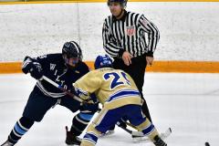 CIACT D3 Ice Hockey; #8 Newtown 7 vs. #9 Wilton 2 - Photo # 1416