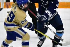 CIACT D3 Ice Hockey; #8 Newtown 7 vs. #9 Wilton 2 - Photo # 1419