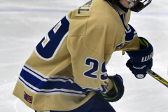 CIACT D3 Ice Hockey; #8 Newtown 7 vs. #9 Wilton 2 - Photo # 146