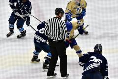 CIACT D3 Ice Hockey; #8 Newtown 7 vs. #9 Wilton 2 - Photo # 1519