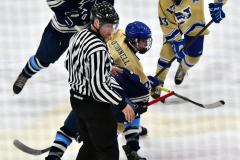 CIACT D3 Ice Hockey; #8 Newtown 7 vs. #9 Wilton 2 - Photo # 1520